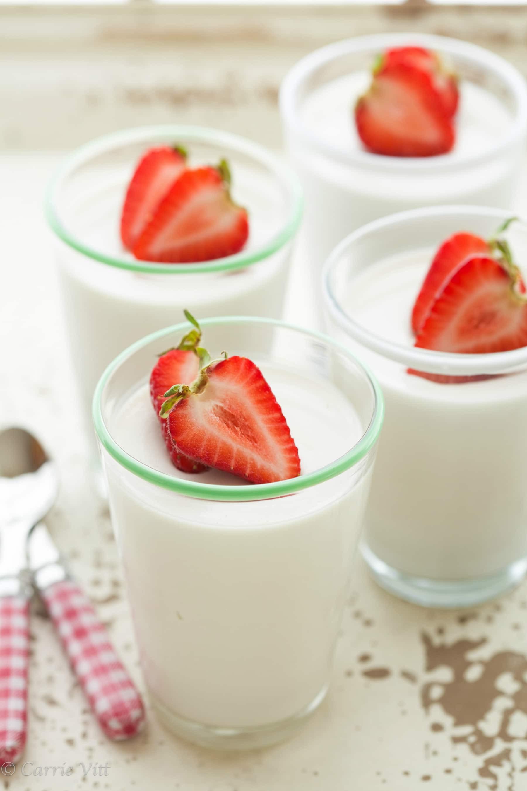 Panna Cotta Desserts  Coconut Panna Cotta Dairy Free Gaps Paleo Grain Free