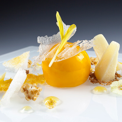 Passion Fruit Desserts  Martin Chiffers Passion Fruit Chicago School Mold Making