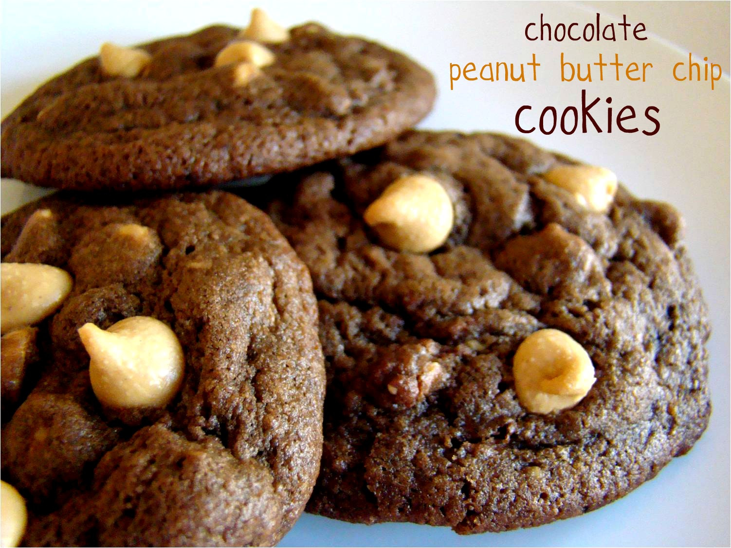 Peanut Butter Chocolate Cookies  Family Feedbag Chocolate peanut butter chip cookies