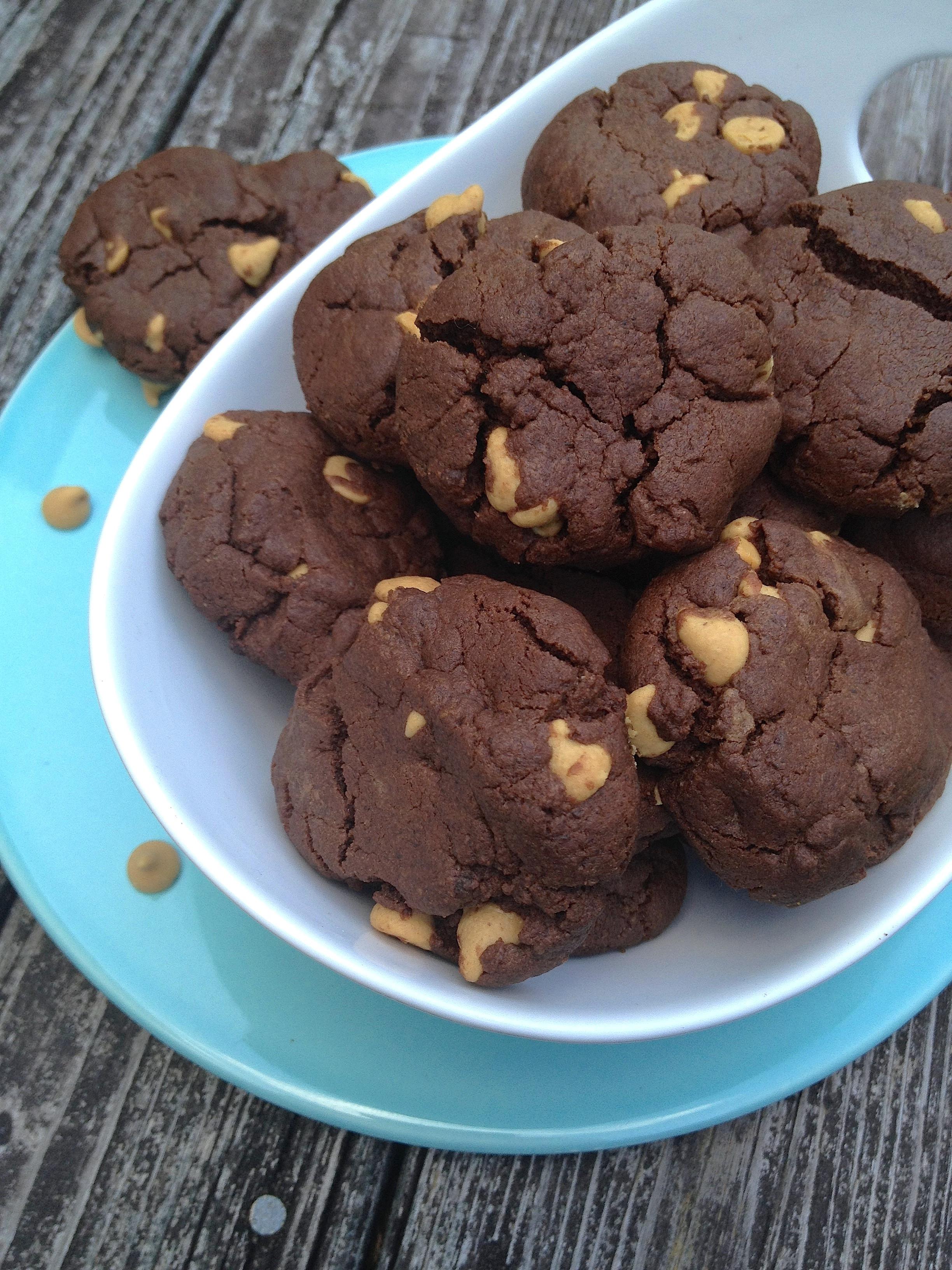 Peanut Butter Chocolate Cookies  Flourless Chocolate Peanut Butter Chip Cookies
