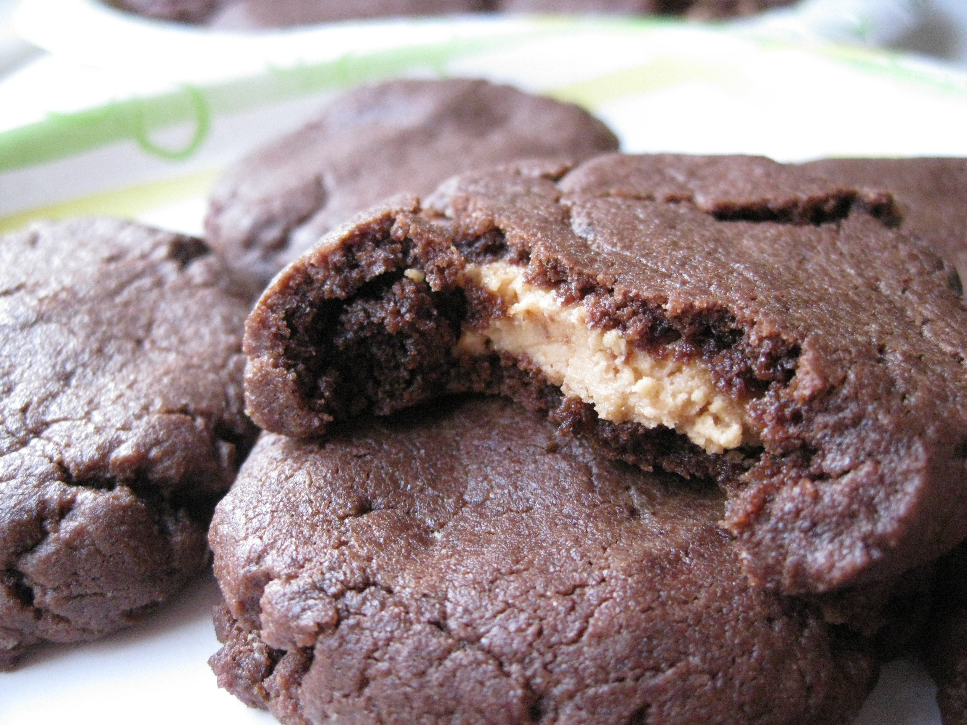 Peanut Butter Chocolate Cookies  chocolate peanut butter cookie recipes