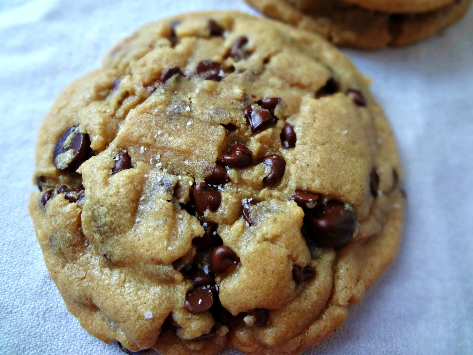 Peanut Butter Chocolate Cookies  The Cooking Actress Browned Butter Salted Peanut Butter