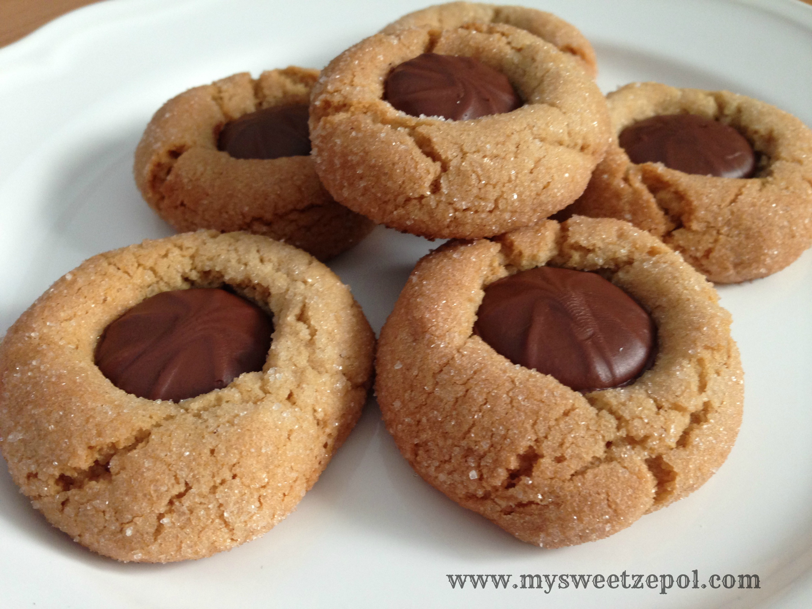 Peanut Butter Chocolate Cookies  Peanut Butter Chocolate Cookies My Sweet Zepol