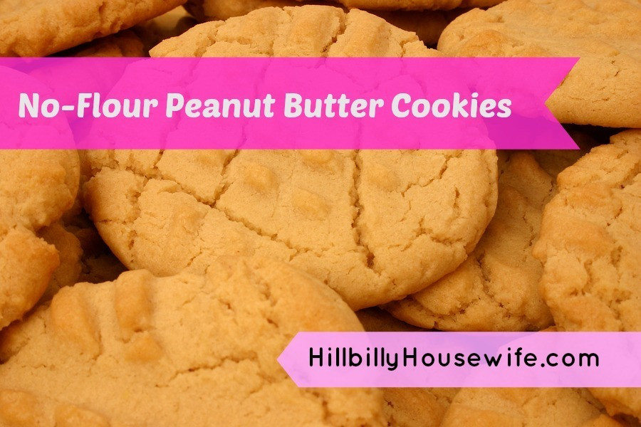 Peanut Butter Cookies No Flour  Peanut Butter Cookie Recipe Without Flour Hillbilly