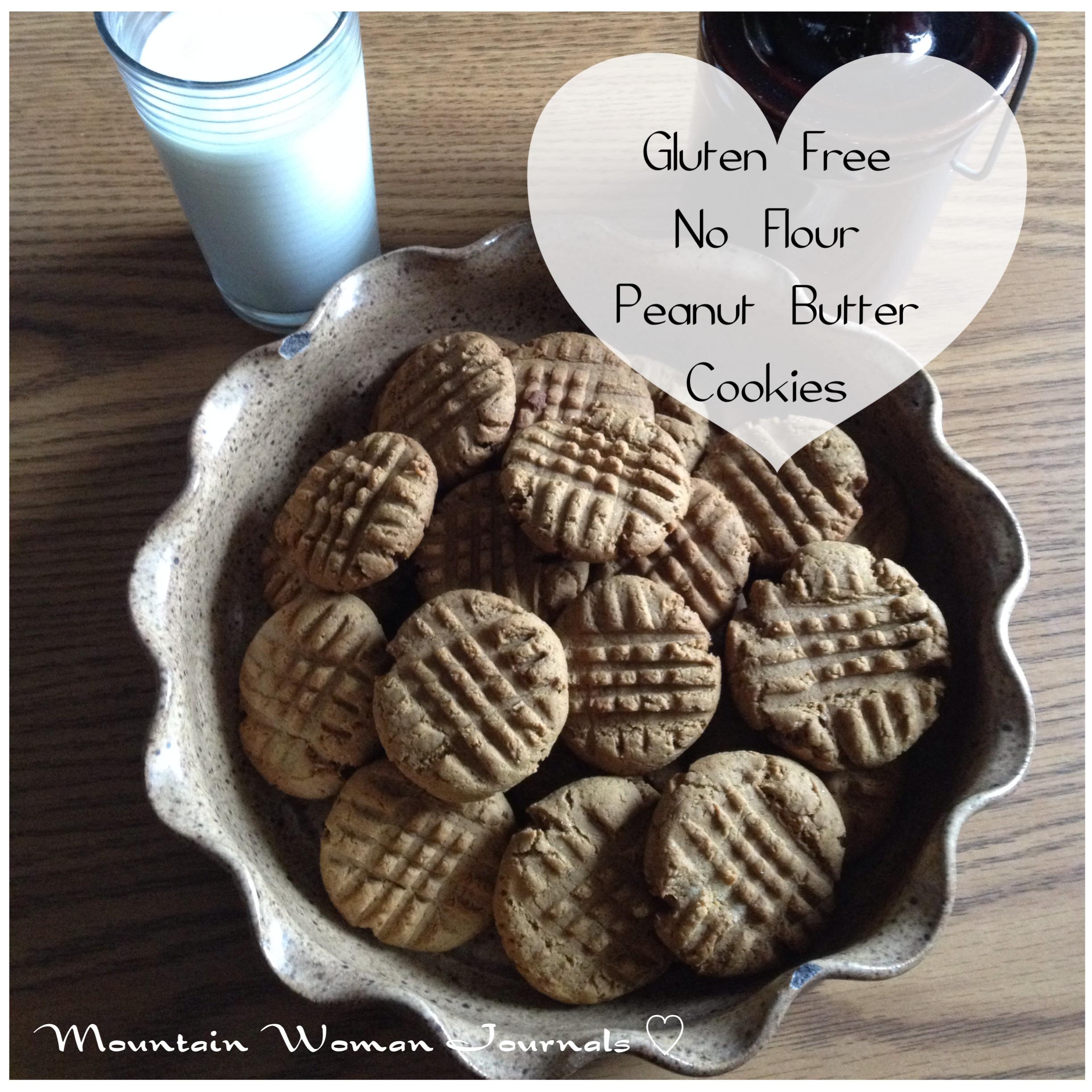 Peanut Butter Cookies No Flour  Gluten Free No Flour Peanut Butter Cookies Trayer Wilderness
