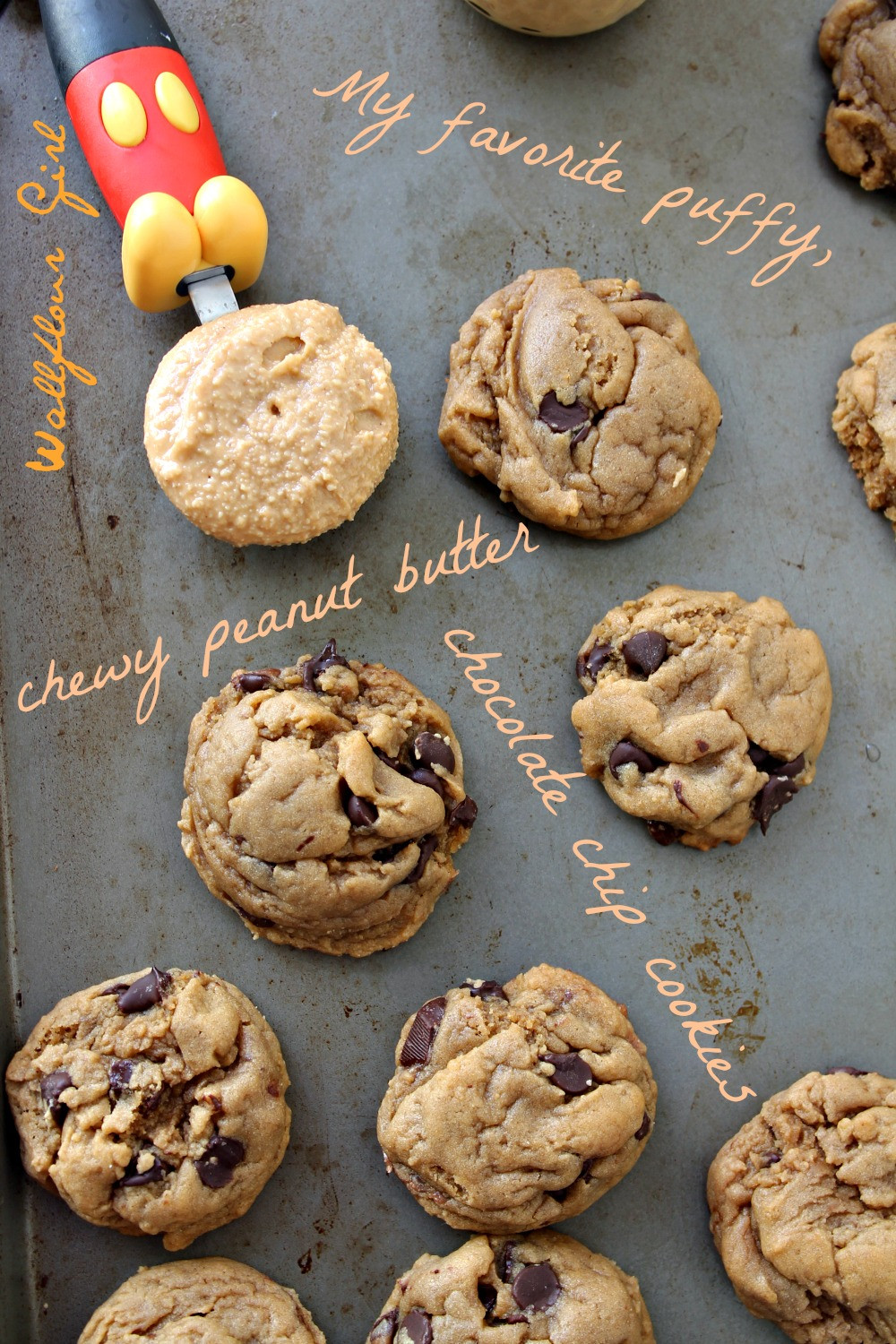 Peanut Butter Cookies With Chocolate Chips  My Favorite Puffy Chewy Peanut Butter Chocolate Chip