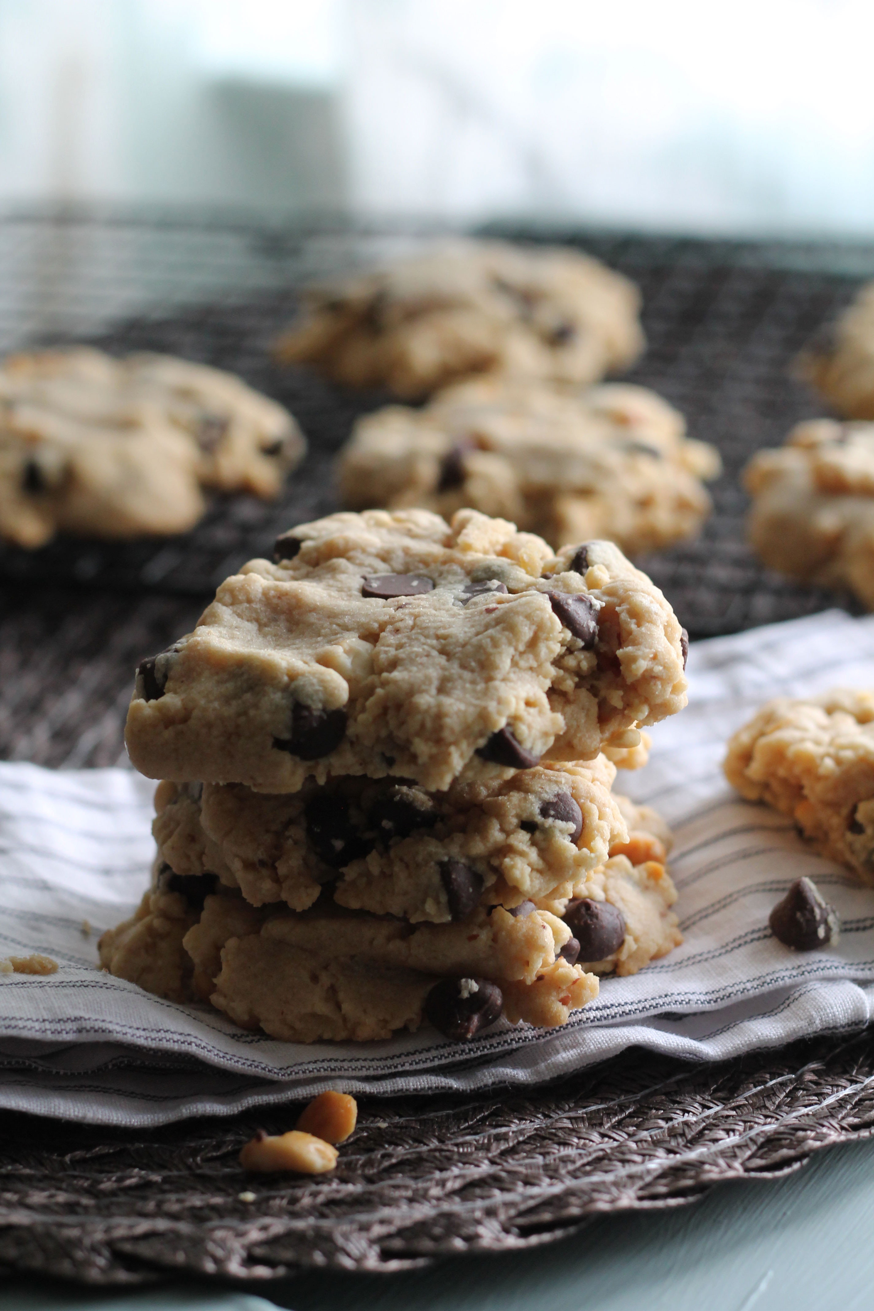 Peanut Butter Cookies With Chocolate Chips  Peanut and Cookie Butter Chocolate Chip Cookies Hall Nesting