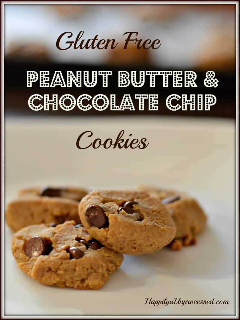 Peanut Butter Cookies With Chocolate Chips  Peanut Butter & Chocolate Chip Cookies Gluten Free