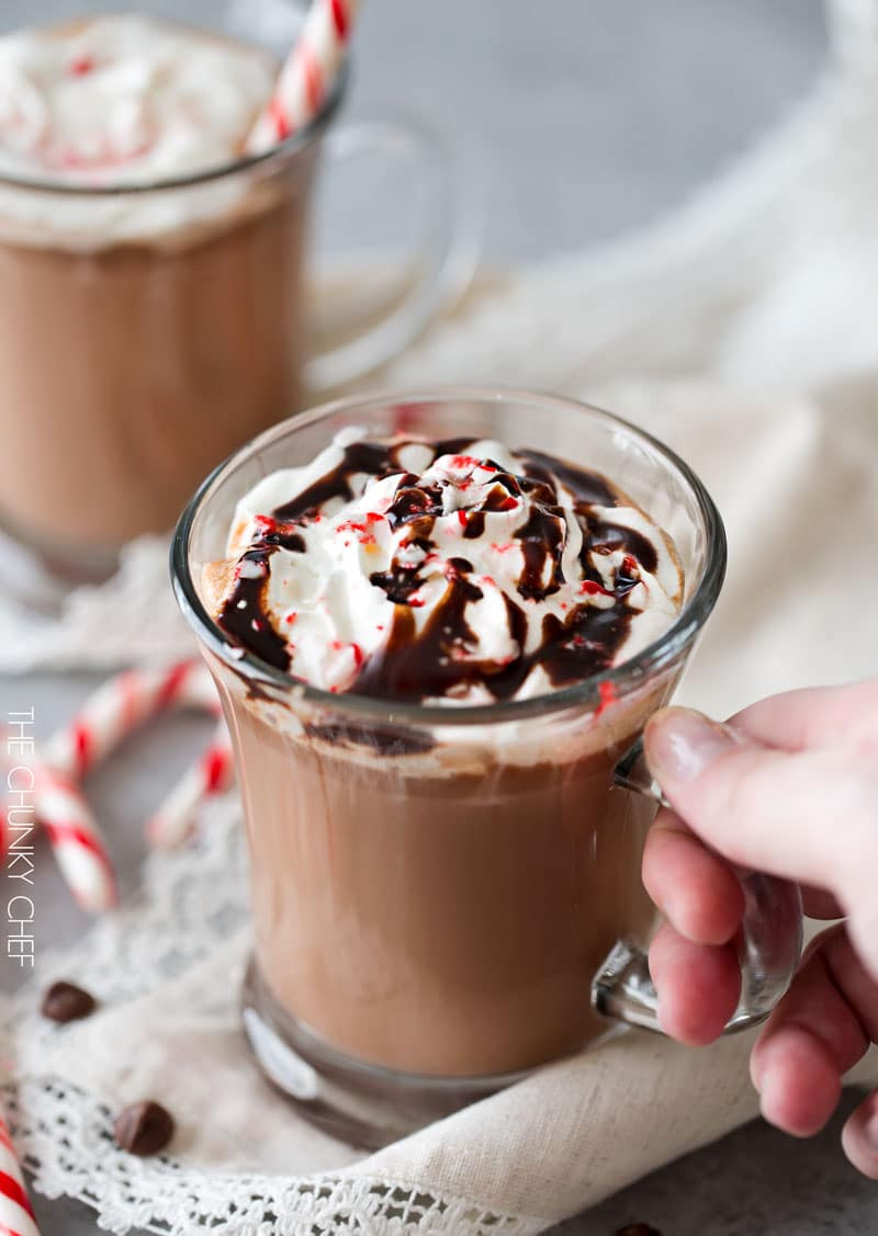 Peppermint Hot Chocolate  Creamy Peppermint Hot Chocolate The Chunky Chef