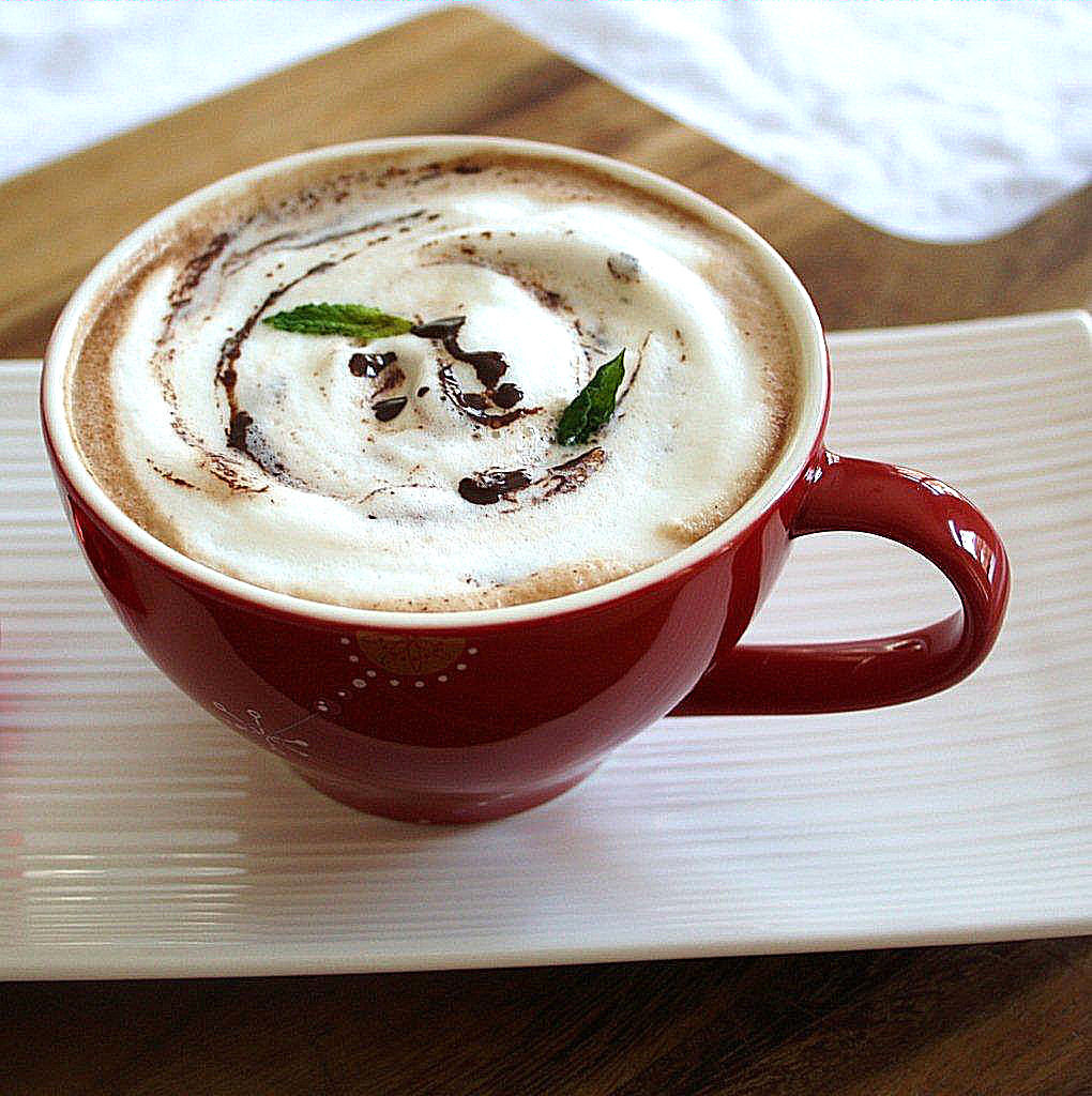 Peppermint Hot Chocolate  Naturally Flavored Peppermint Hot Chocolate