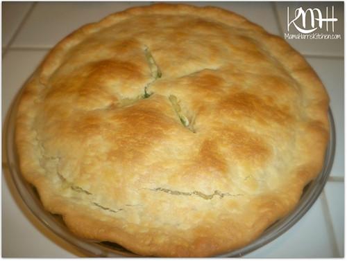 Pillsbury Pie Crust Recipes  Chicken Pot Pie made with Pillsbury Pie Crusts recipe