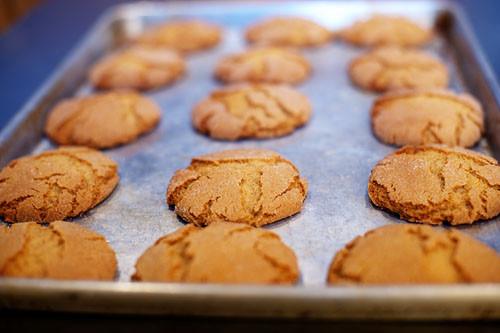Pioneer Woman Christmas Cookies  REE 3397 6893