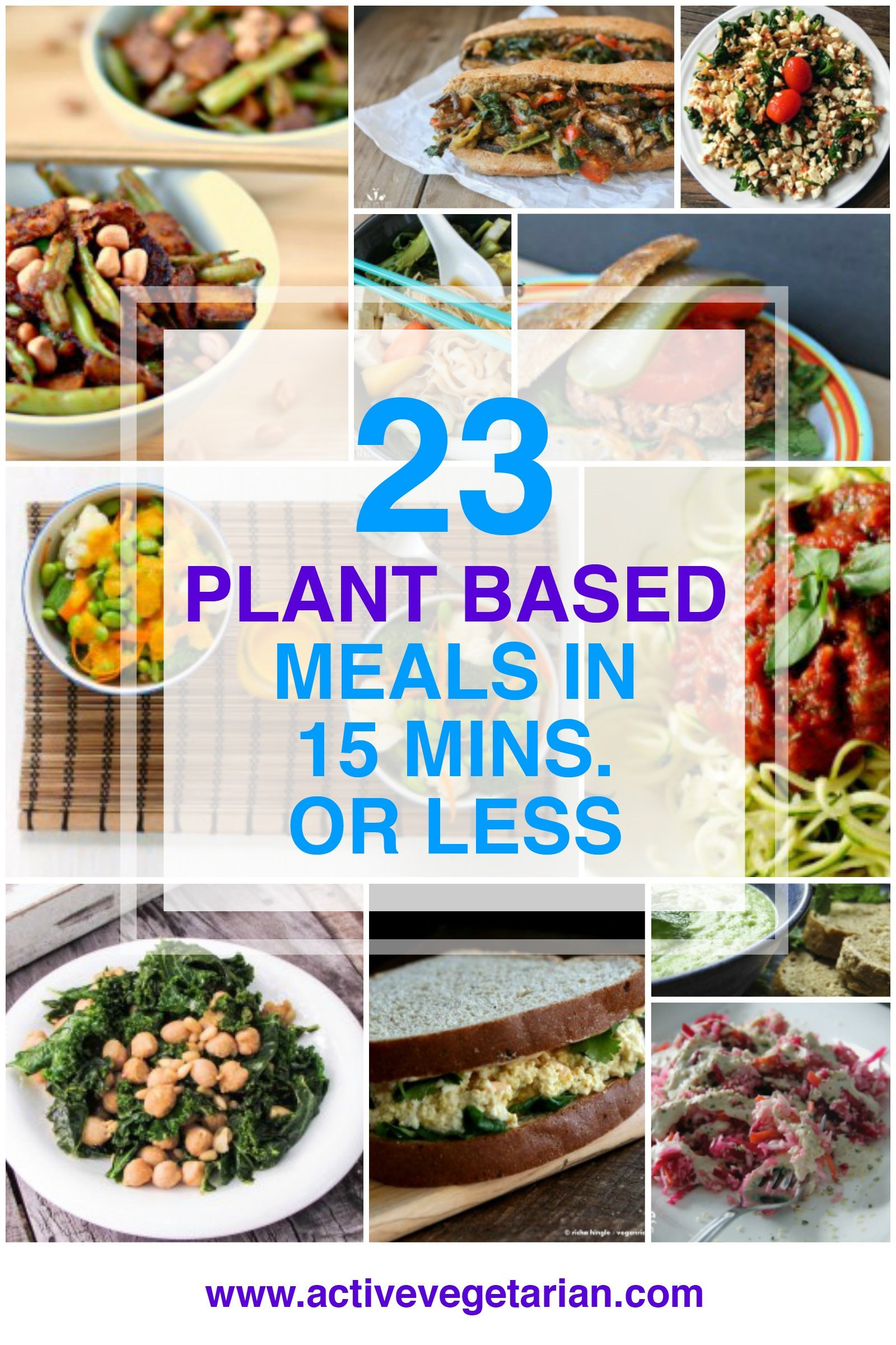 Plant Based Dinner Recipes  23 Plant Based Meals in 15 Minutes or Less