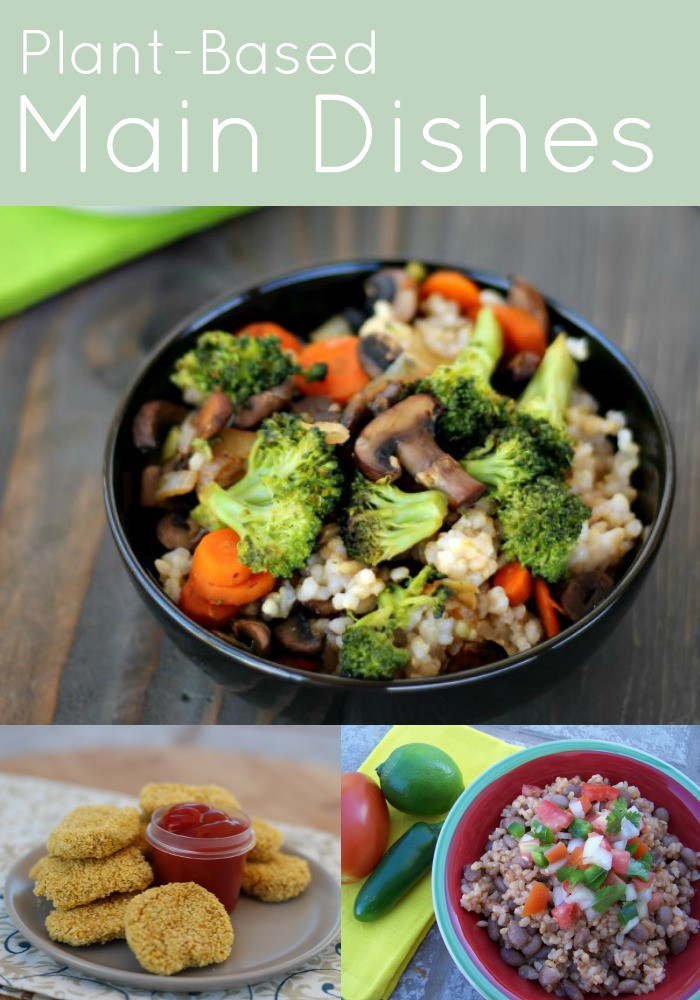 Plant Based Dinner Recipes  Plant Based Recipes My Plant Based Family