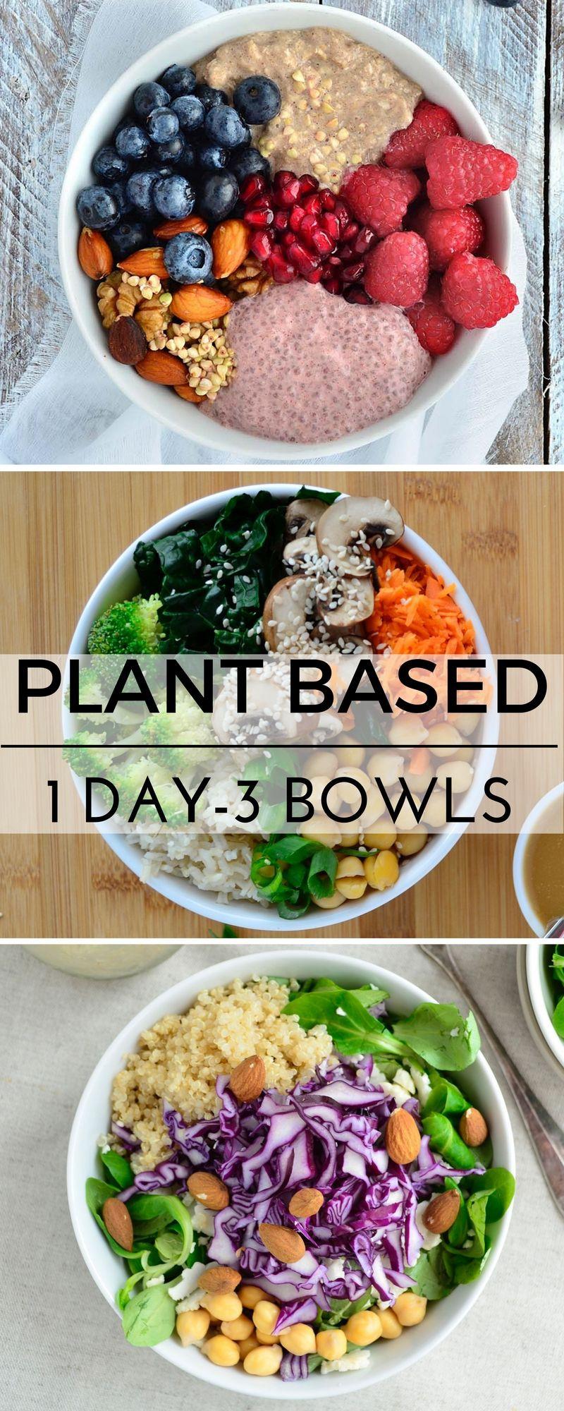 Plant Based Dinner Recipes  Plant based recipes vegan recipes healthy gluten free
