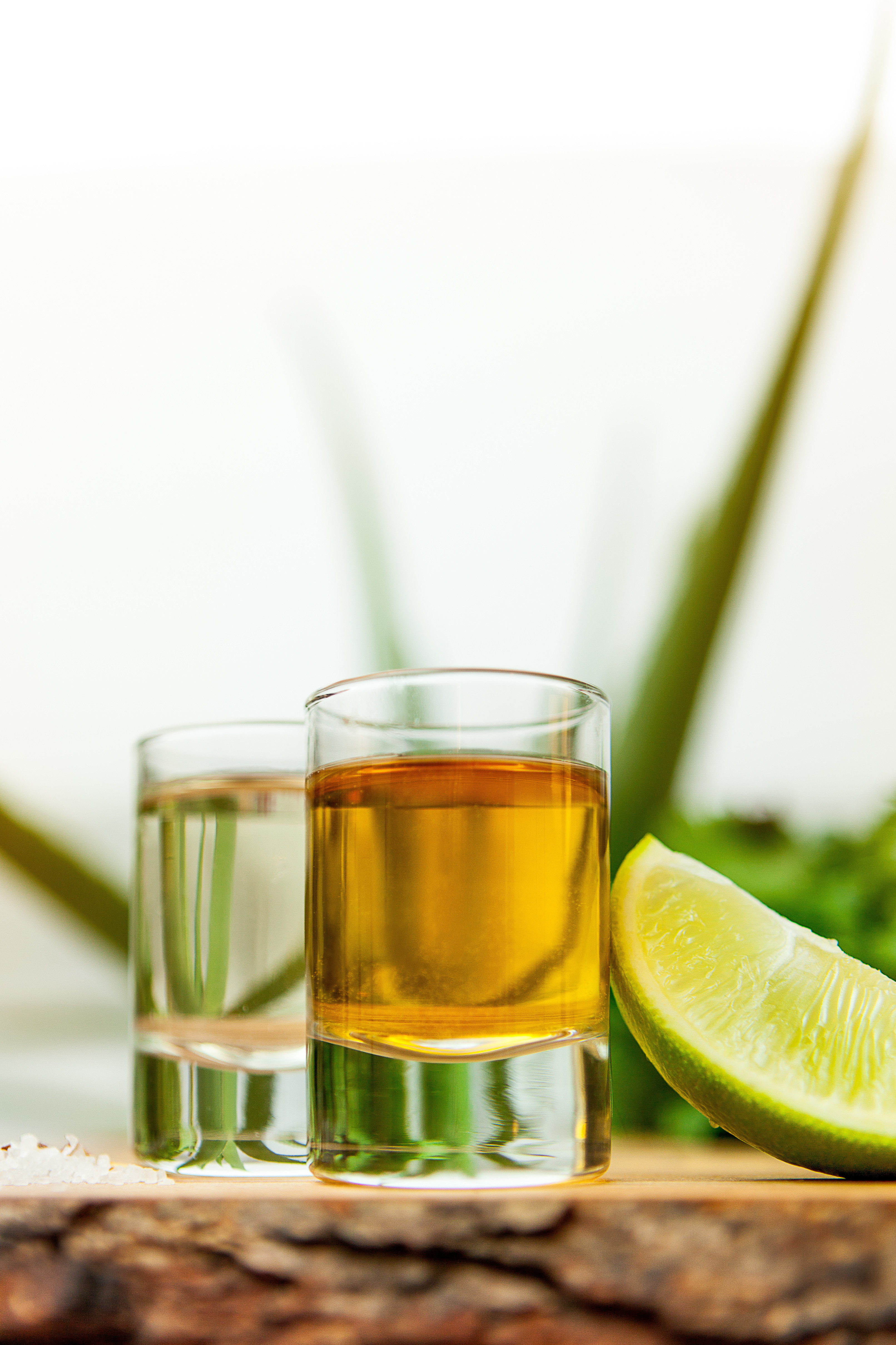 Popular Tequila Drinks  Get in Formation with the Best Tequila for Shots and