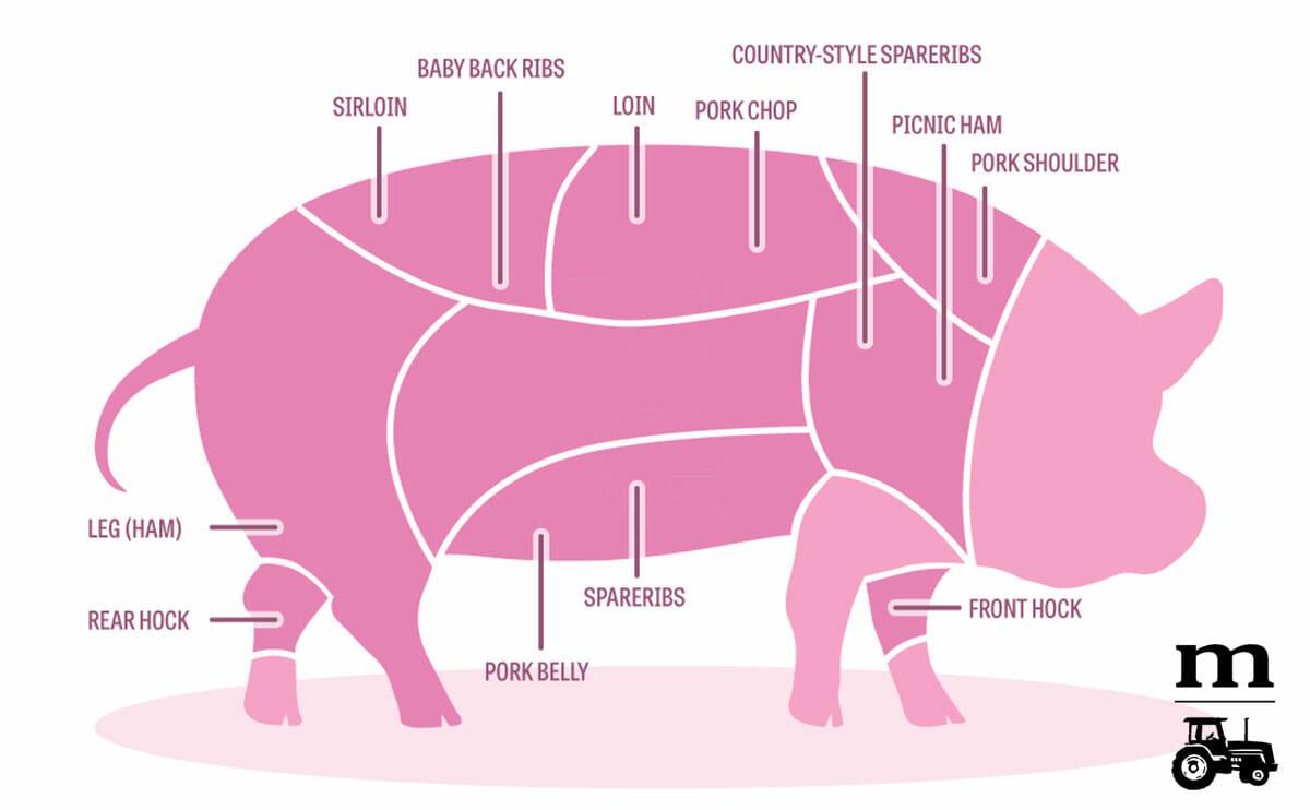 Pork Butt Vs Shoulder  Pork Butt