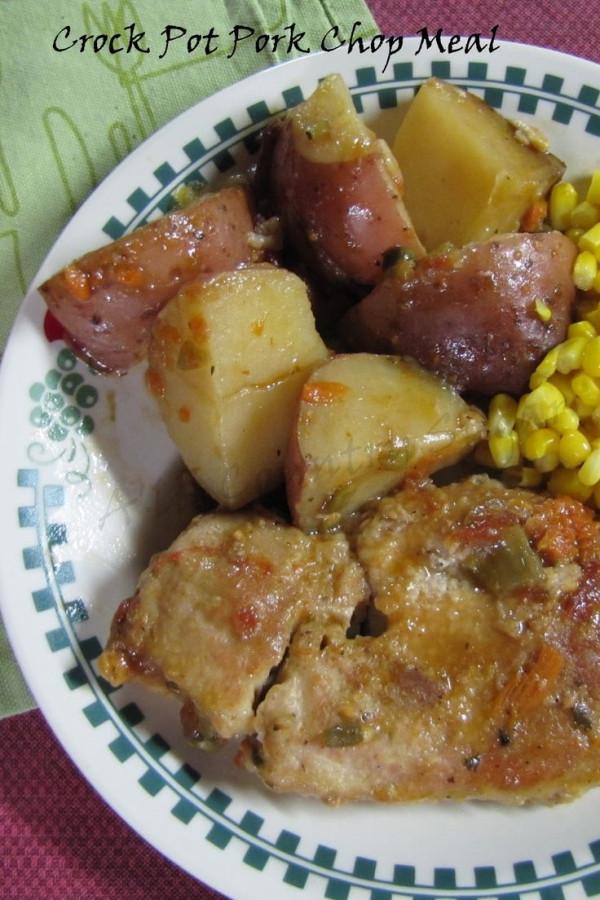 Pork Chops Recipes In Crock Pot  crock pot pork chop