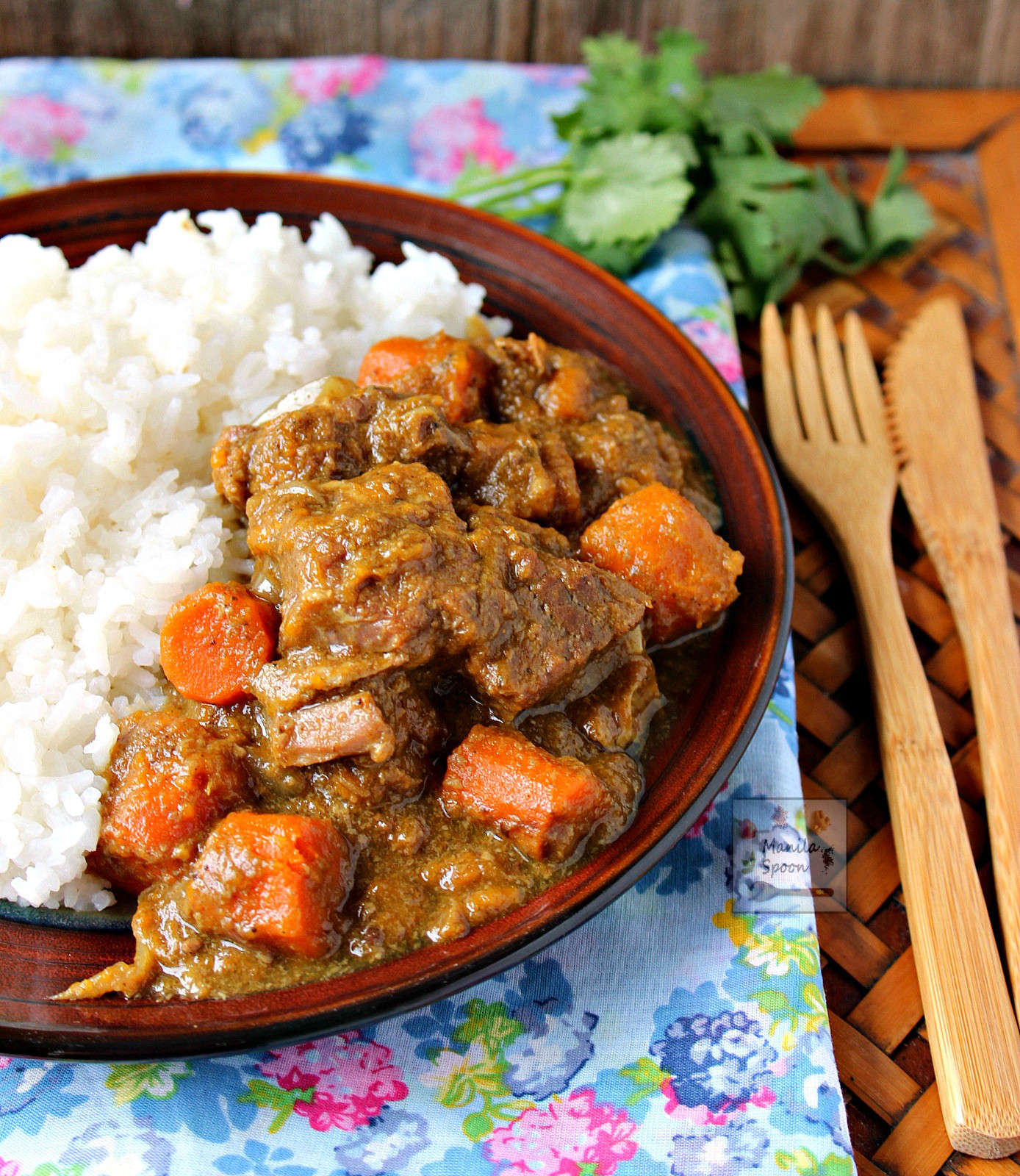 Pork Stew Recipes  Slow Cooker Coconut Curry Beef Stew