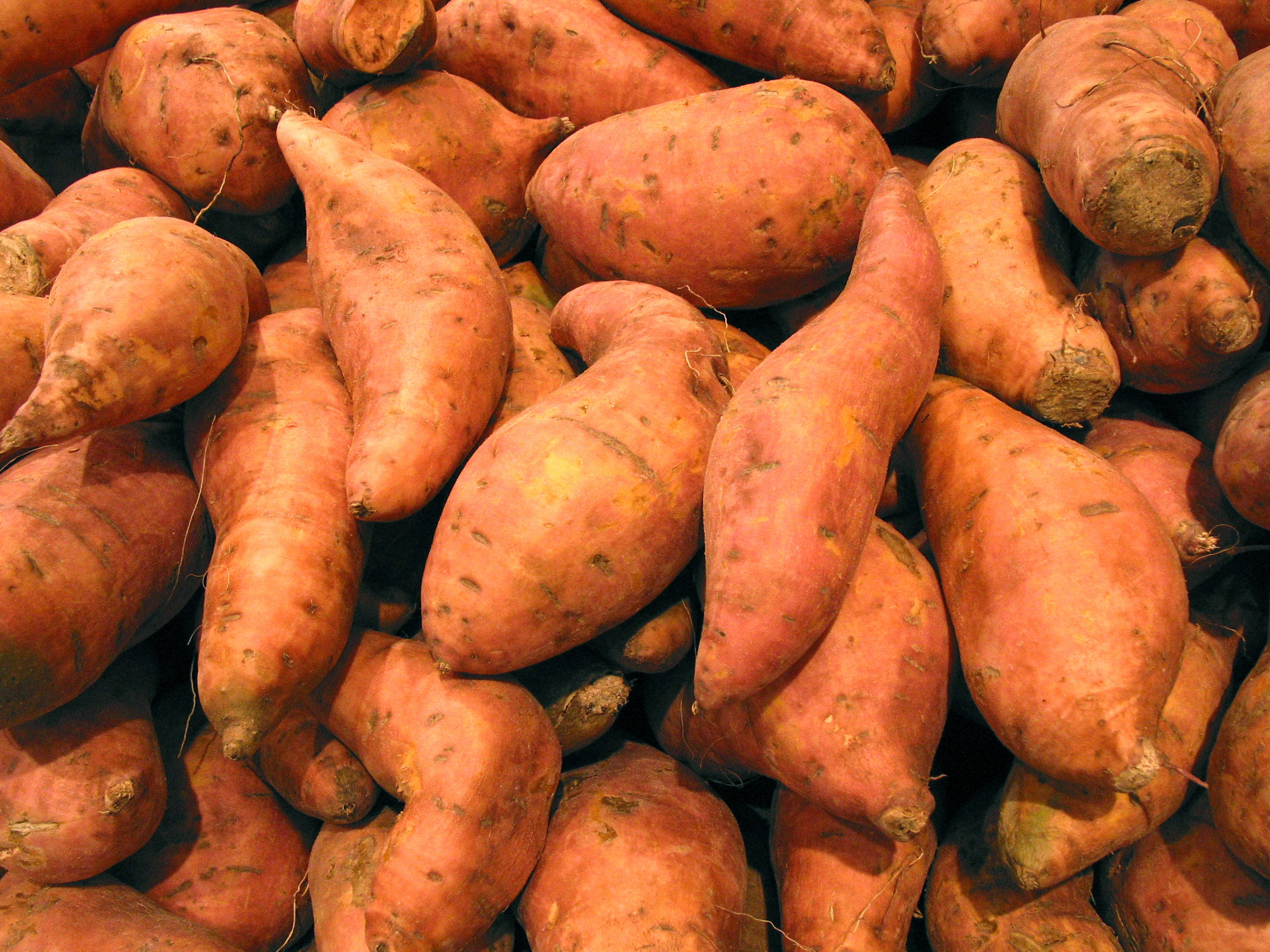 Potato A Vegetable  Sweet Potato FREE Stock Image Picture Sweet