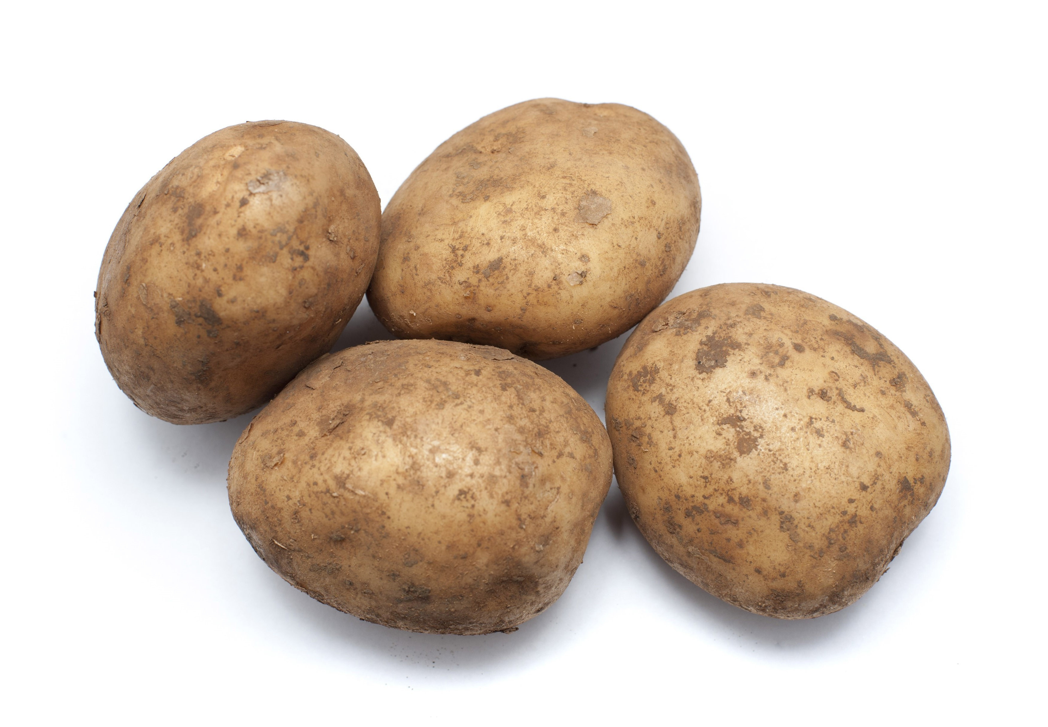 Potato A Vegetable  Fresh uncleaned potatoes Free Stock Image