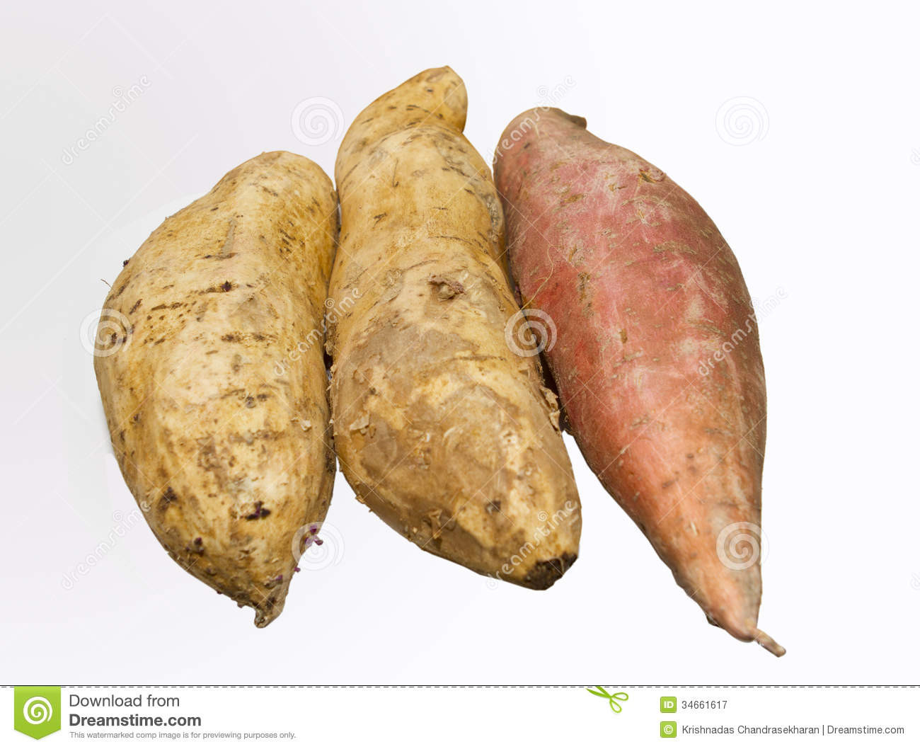 Potato A Vegetable  Sweet Potato Royalty Free Stock graphy Image