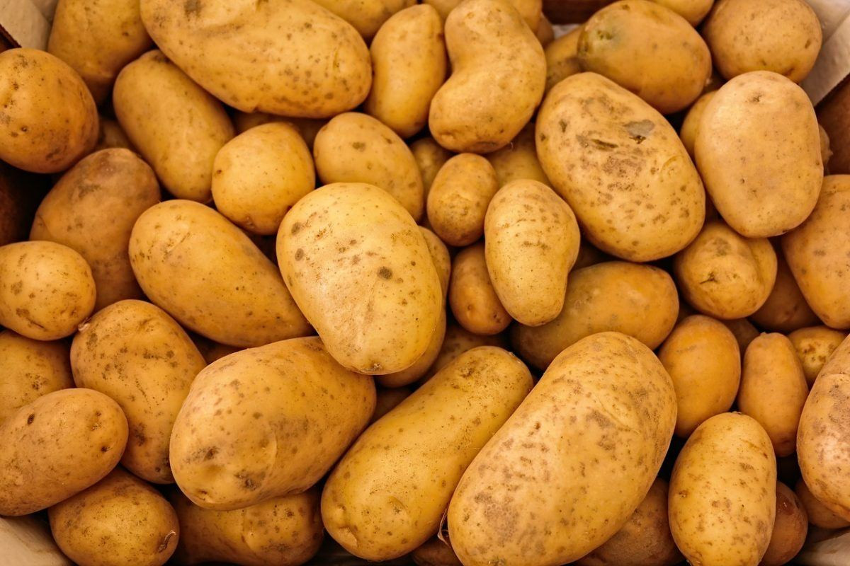 Potato A Vegetable  The problem with potatoes The Nutrition Source