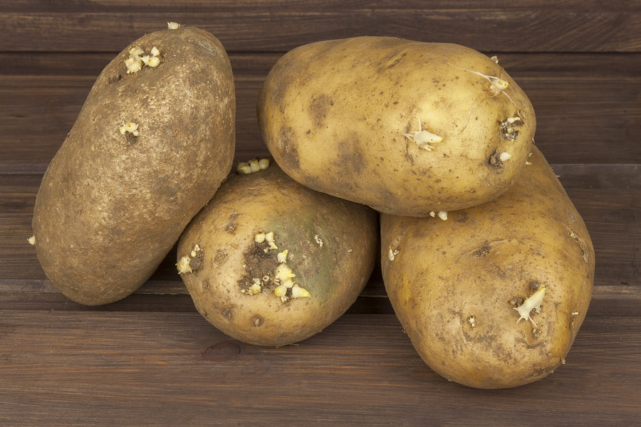 Potato Diet Rules  The Potato Cleanse Rules is It a Healthy Diet to Jump