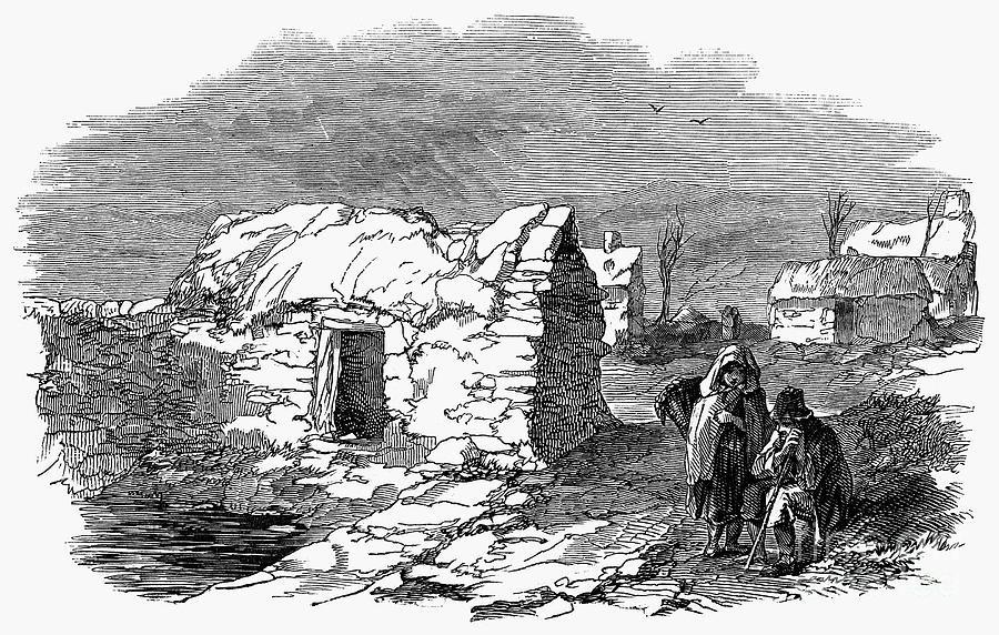 Potato Famine Ireland  THE VIRTUAL VICTORIAN THE VICTORIAN ORIGINS OF THE IRISH