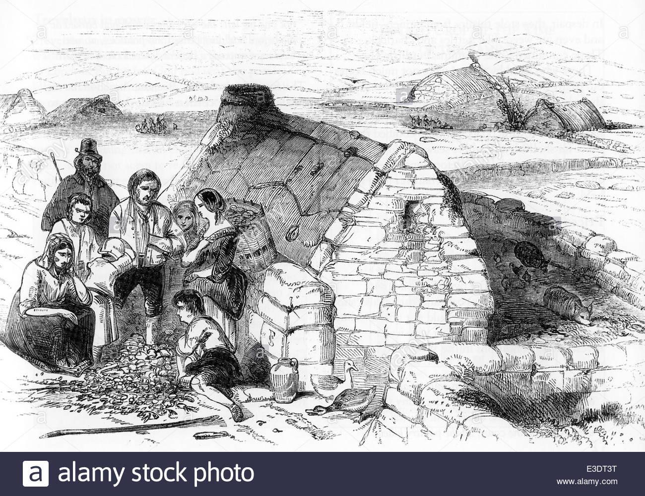 Potato Famine Ireland  IRISH POTATO FAMINE A destitute family engraving from The