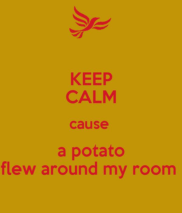 Potato Flew Around My Room  KEEP CALM cause a potato flew around my room Poster