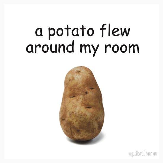 Potato Flew Around My Room  A Potato Flew Around My Room Stickers