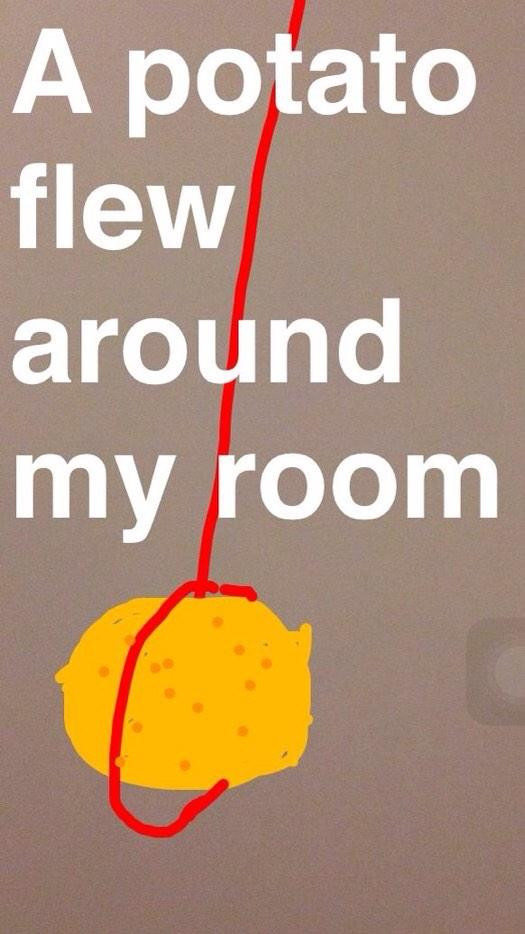 "Potato Flew Around My Room  Lisa on Twitter ""A potato flew around my room"