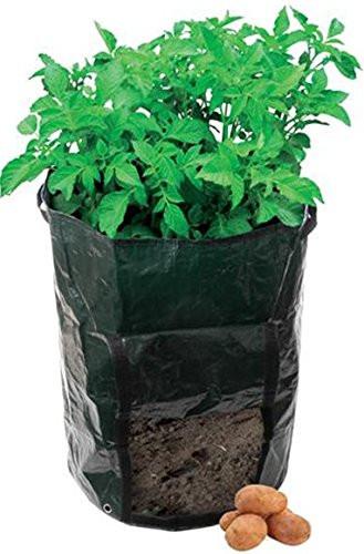 Potato Grow Bags  Yuhwa Green Potato Planter Gardeners Waterproof Grow Bags