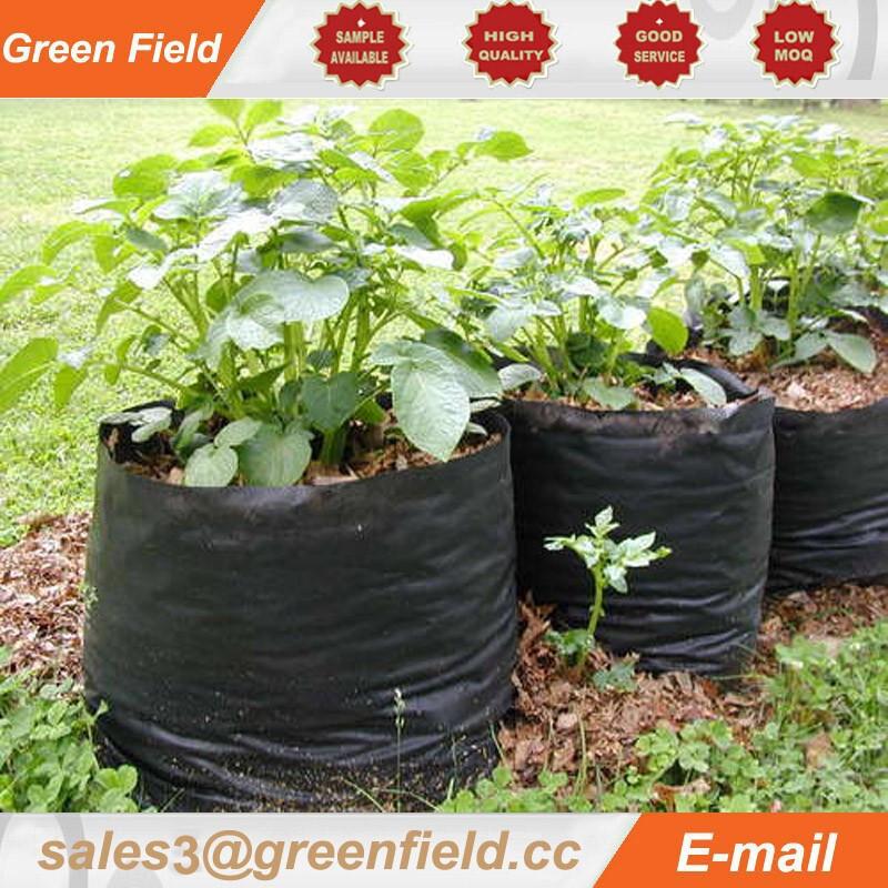 Potato Grow Bags  Sweet Potatoes Grow Bag Fabric Grow Bags Buy Grow Bag