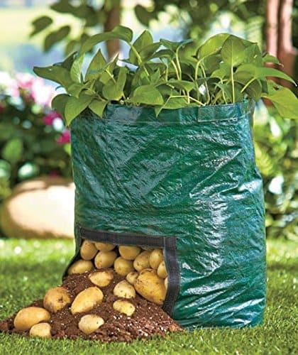 Potato Grow Bags  Grow Potatoes In A Barrel Youtube Video Tutorial DIY