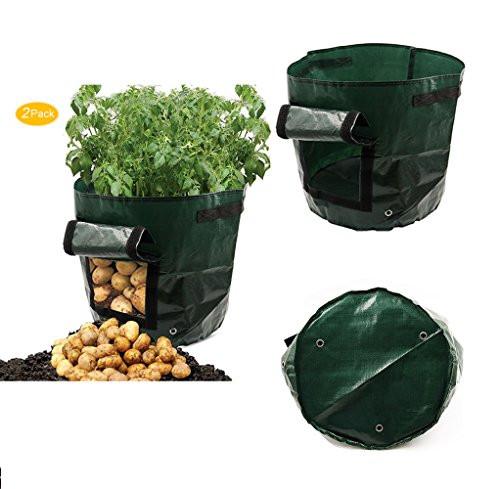 Potato Grow Bags  GPDSTAR 2 pack Garden Potato Grow Bag Ve ables Planter