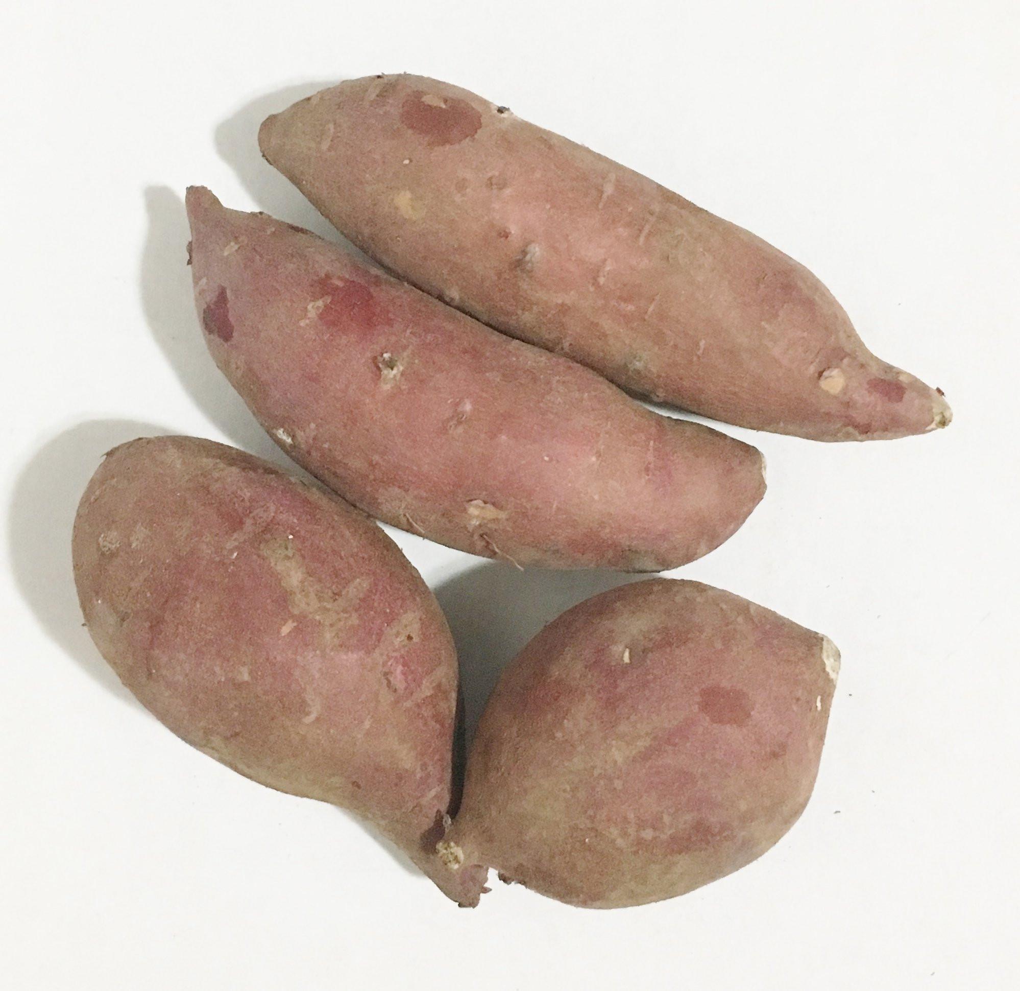 Potato In Japanese  Amazon Fresh Purple Sweet Potatoes 2LBS