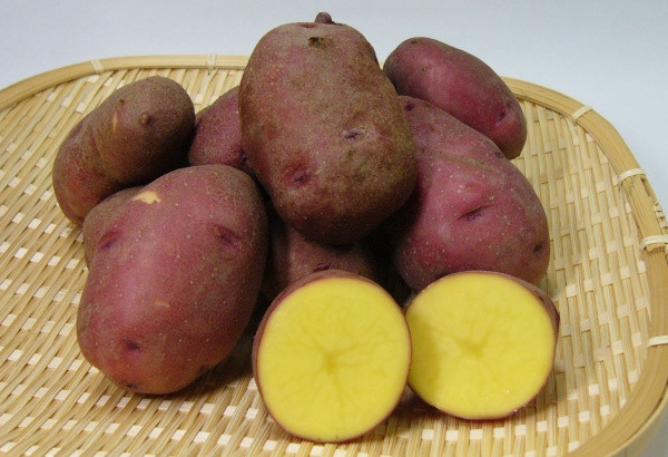 """Potato In Japanese  Imo """"Japanese Tubers"""" The Varieties and Basic Knowledge"""