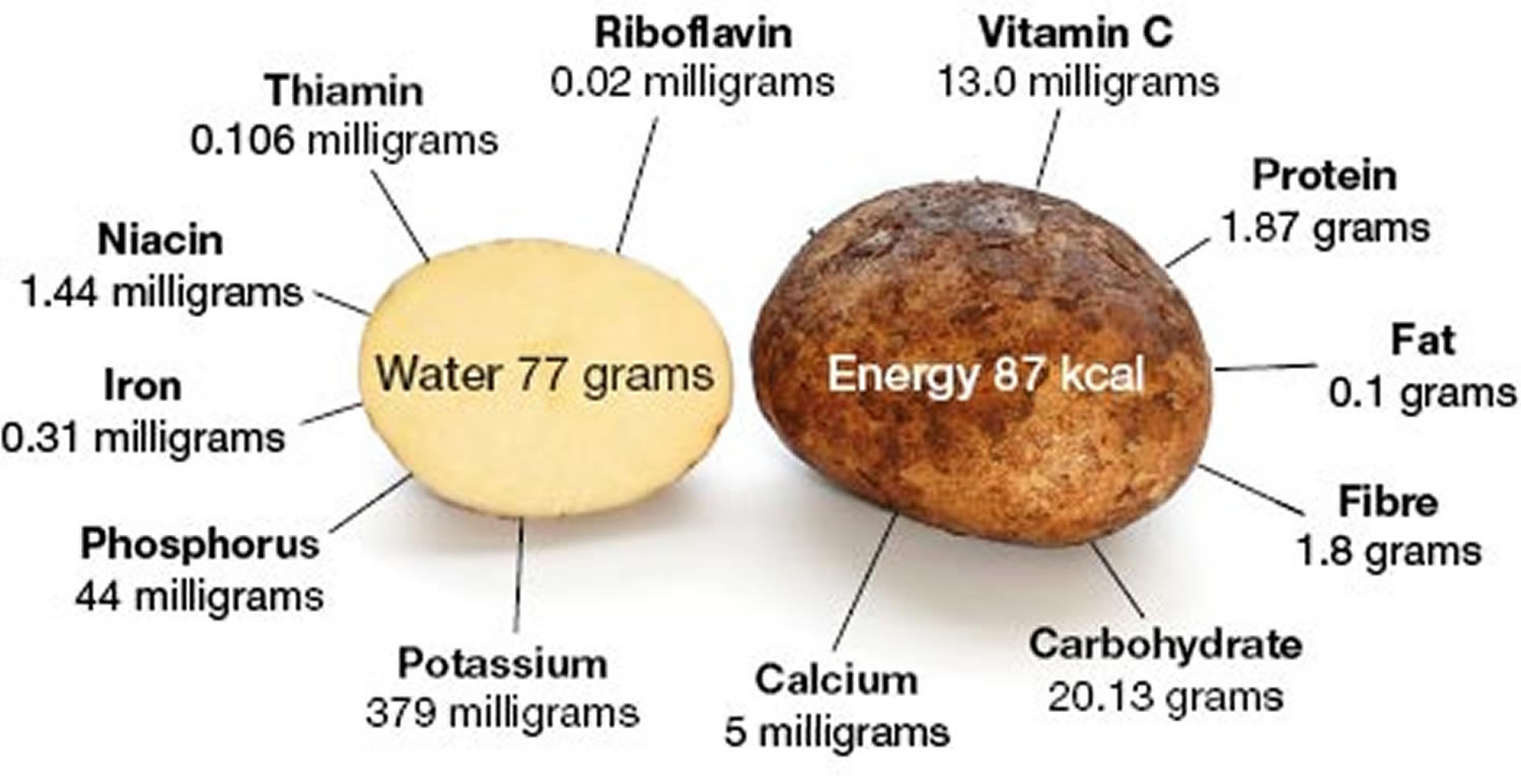 Potato Nutrition Information  Potato Nutrition Facts Calories Fiber Fat Carbs and