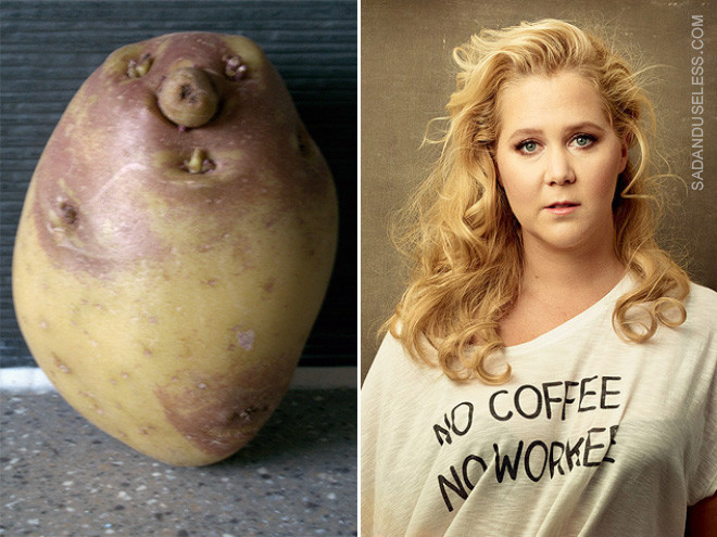 Potato Or Amy Schumer  Potato or Amy Schumer Can You Tell the Difference