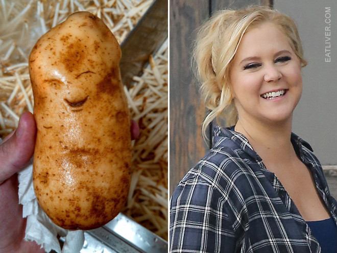 Potato Or Amy Schumer  Amy Schumer or Potato Can You Tell the Difference