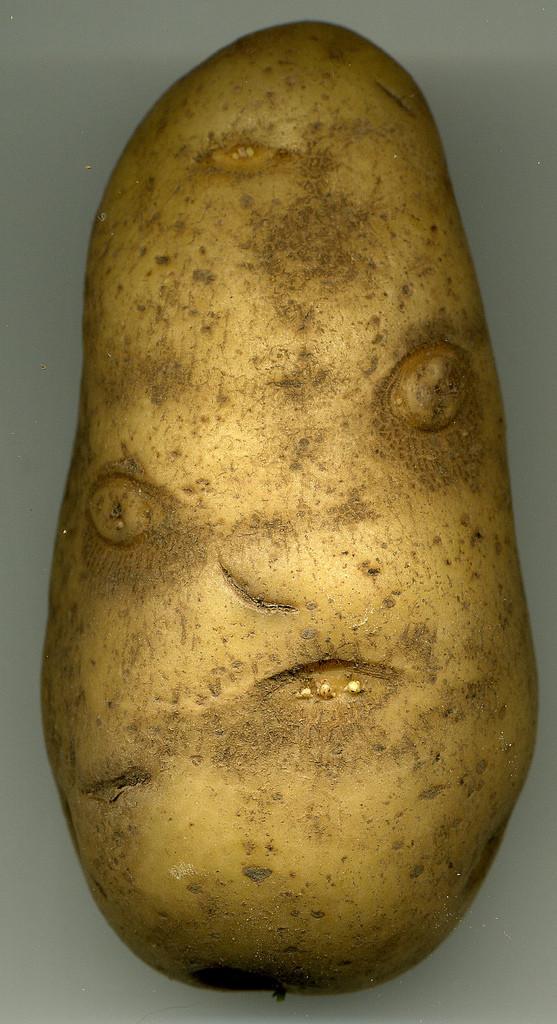 Potato With A Face  Potato Face Reverse Search