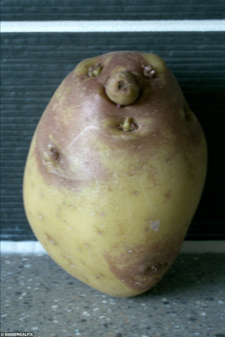 Potato With A Face  SPUD U LIKE – shopper finds a face in a potato