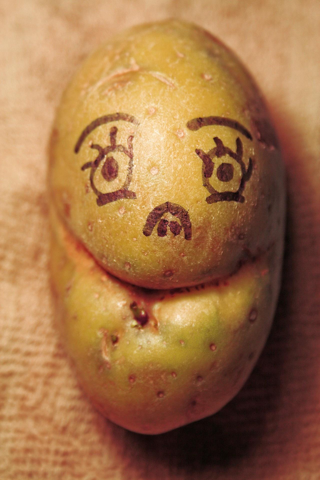 Potato With A Face  Mr Potato Head