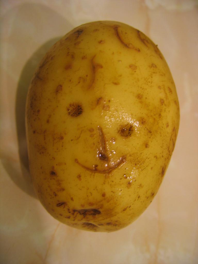 Potato With A Face  305 365 Mr Potato Face