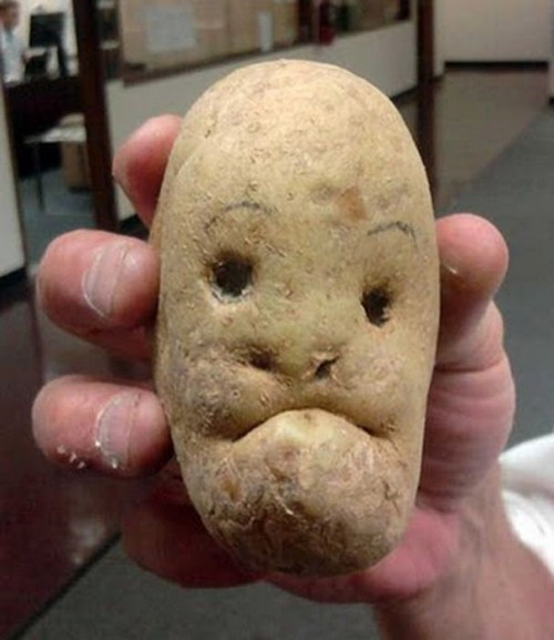 Potato With A Face  WINEBOCON4 It happened PHOTOS ARE UP VIDEO TOO