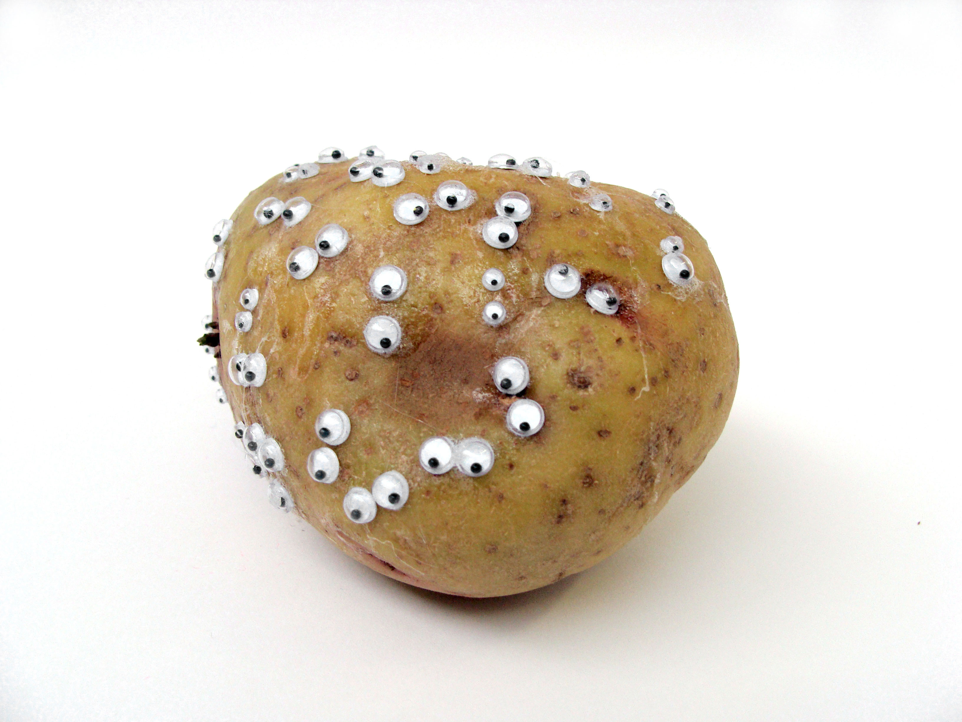 Potato With Eyes  MWO Forums Potatoes Page 3
