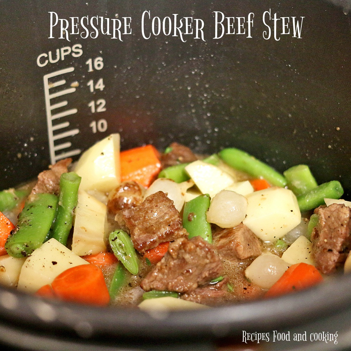 Pressure Cooker Beef Stew Recipe  Pressure Cooker Beef Stew