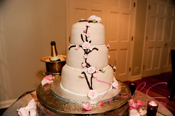 Publix Wedding Cakes  How Much Are Publix Wedding Cakes Wedding and Bridal